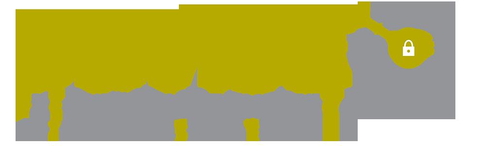 DEVISE - Datenqualitätsmanagement zur Verbesserung der Informationssicherheit